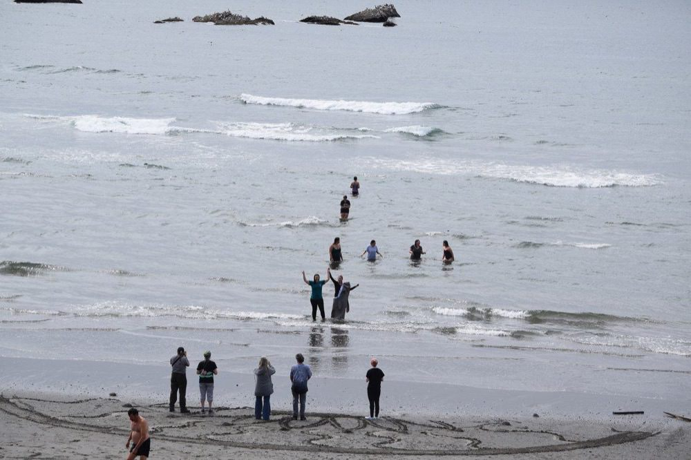 visitors swimming in the cold olympic coast water