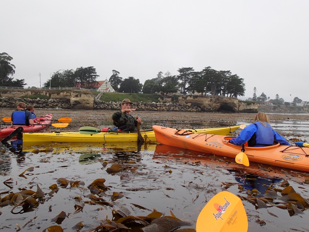 kayakers in monterey bay national marine sanctuary