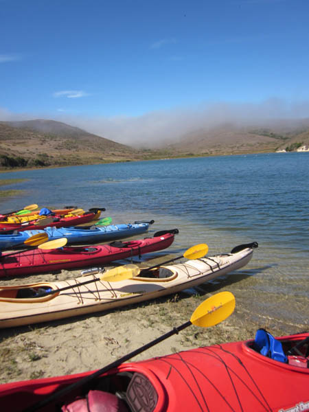 kayaks on shore near a bay