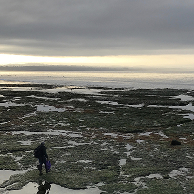 person at tidepools in the early morning