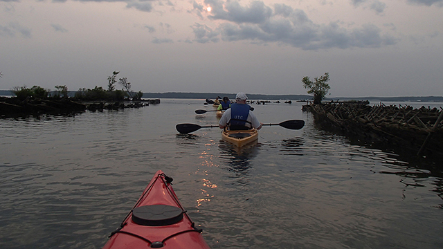 kayakers on mallows bay