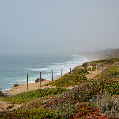 foggy coastline at fort dunes state park