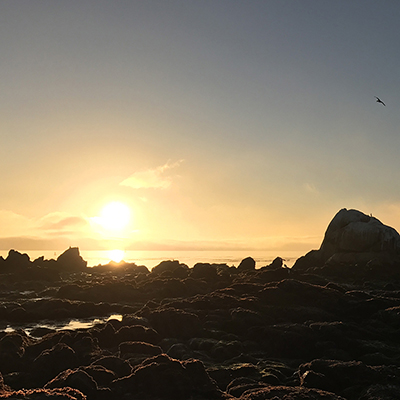 sunrise over rocks