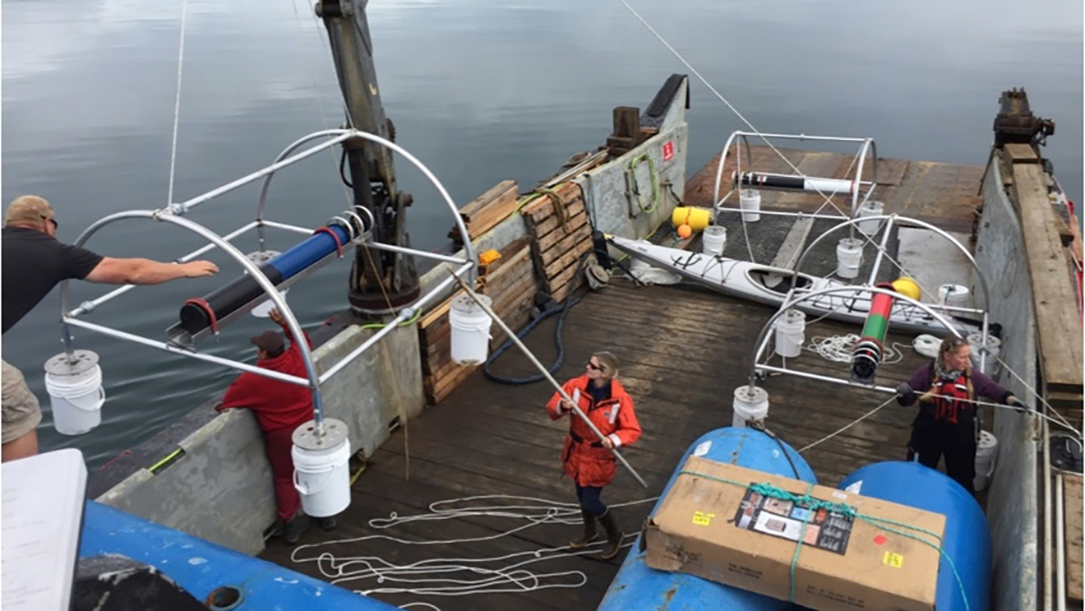 the deck of a ship with haver in the middle front preparing a hydrophone mooring