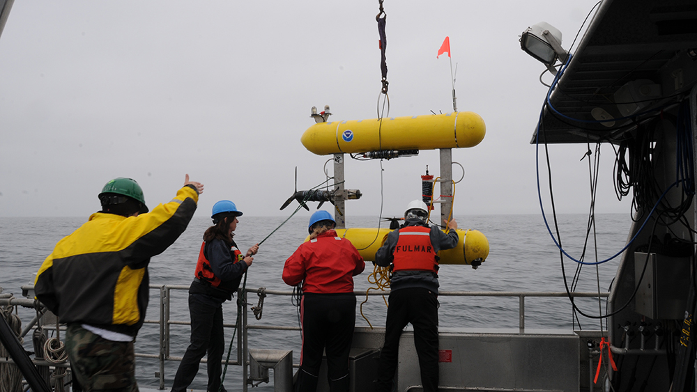 researchers lower an rov off a ship