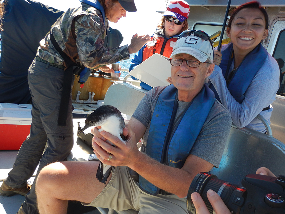 kevin powers holds a shearwater for tagging