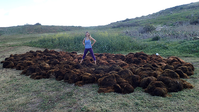 lindsay marks standing in the center of a large pile of seaweed