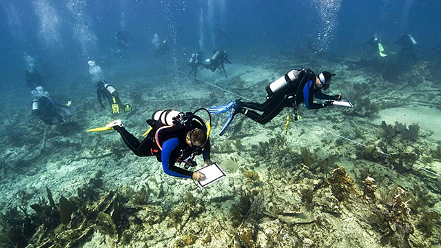 divers mapping a shipwreck