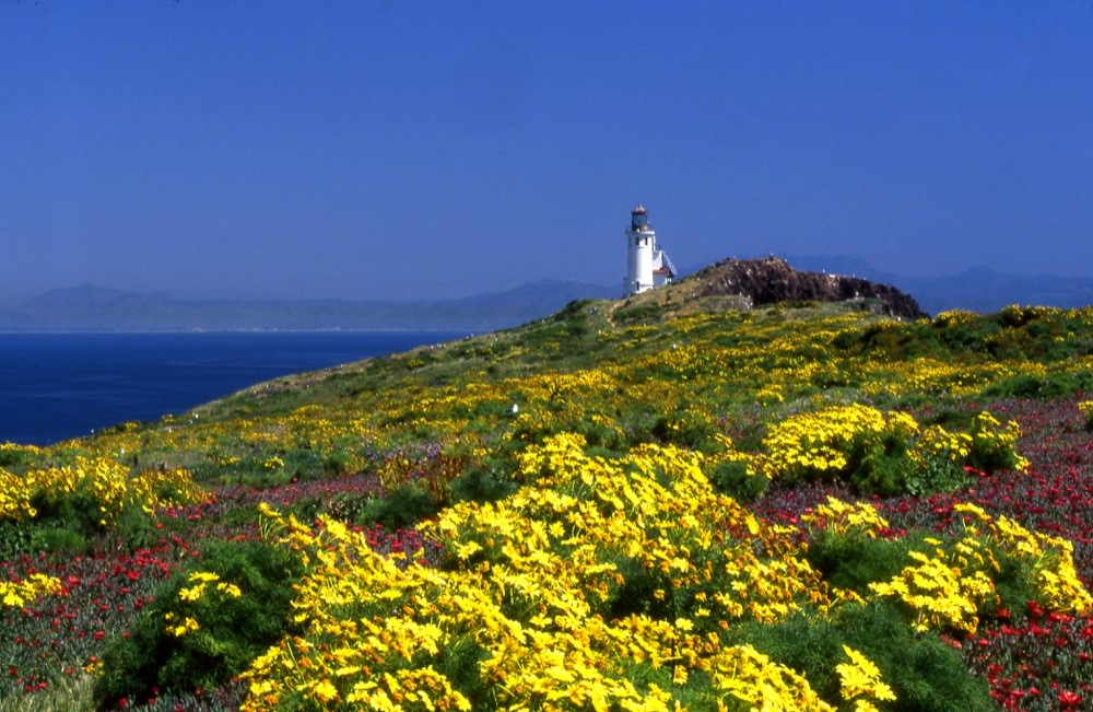 Anacapa Island Light Station