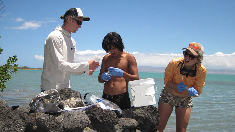 three people monitor water quality