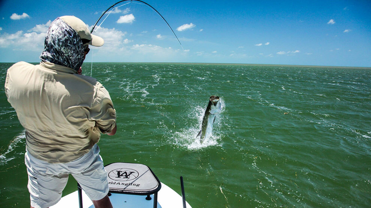 an angler reels in a tarpon in florida keys national marine sanctuary