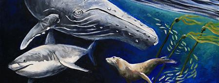 whale, shark, and sea lion