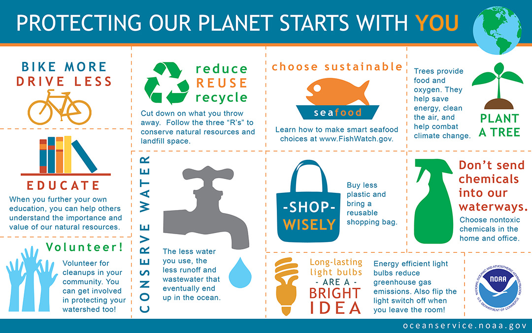 Infographic showing ten things you can do to protect the earth