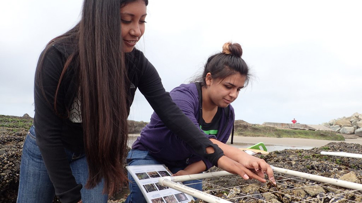 two teenagers conducting monitoring in the tidal zone