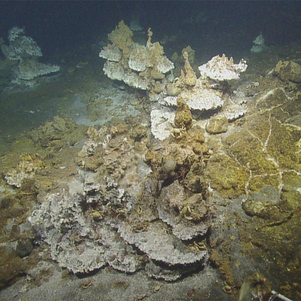 geologic structures on the seafloor