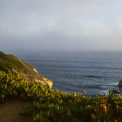 a view of fog from a coastline
