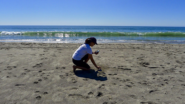 a woman crouching on a beach to sample sediment