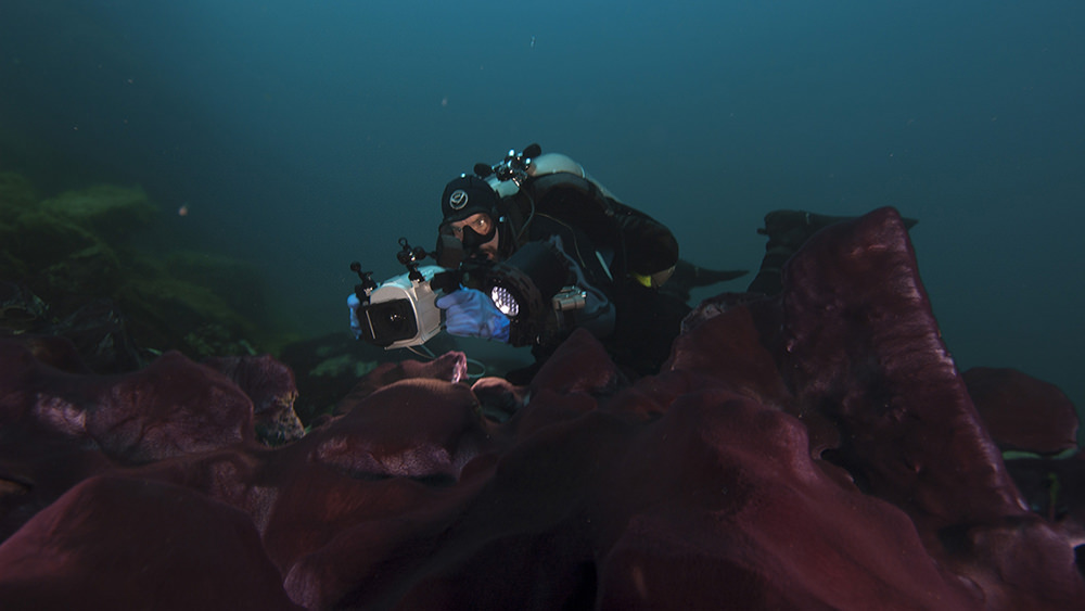 diver photographing sinkhole features