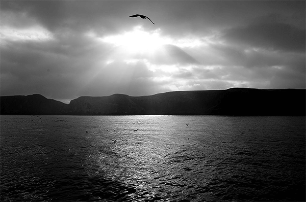 Black and white photo of a sunset over water