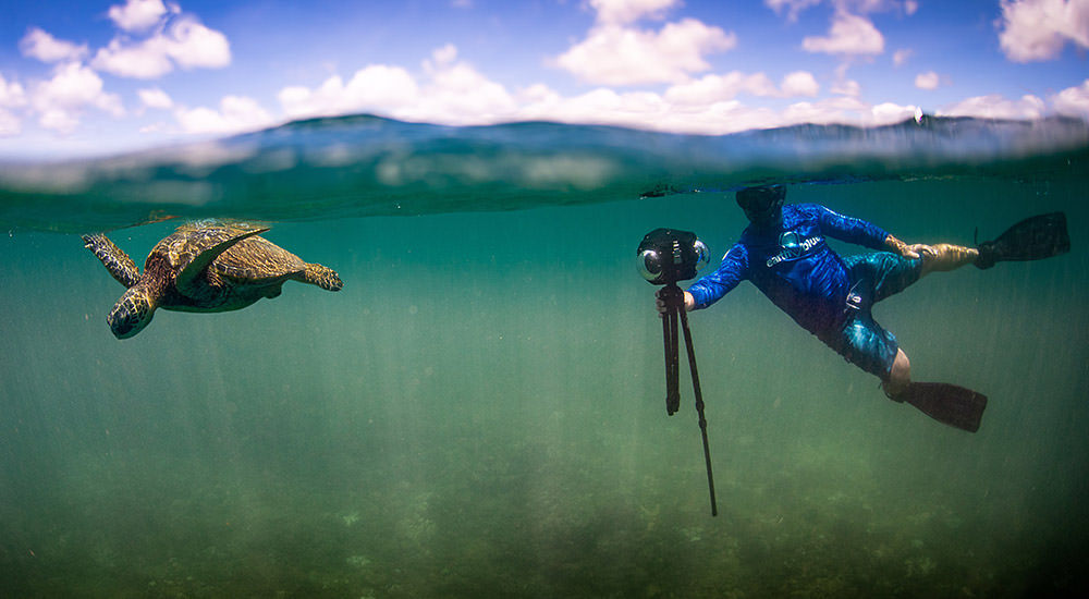 turtle swimming being filmed by a snorkler