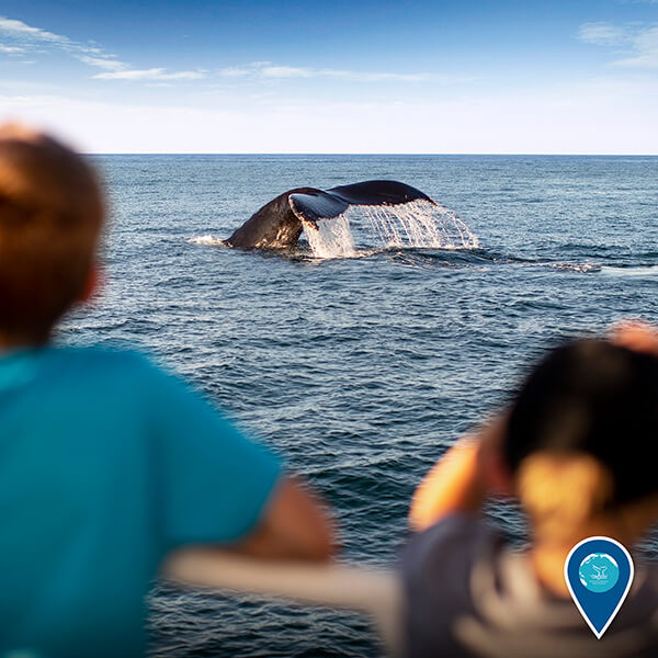 two children look at a whale fluke from a boat