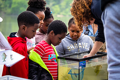 Students Elementary School learn about different fish species