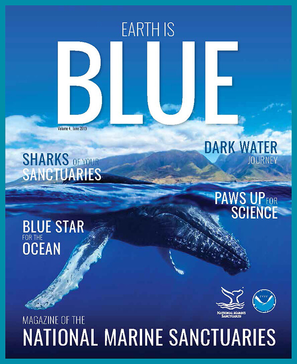 earth is blue magazine volume 4 cover - a humpback whale