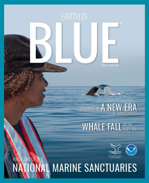 earth is blue magazine volume 5 cover - a person looks out over the water at a whale tail