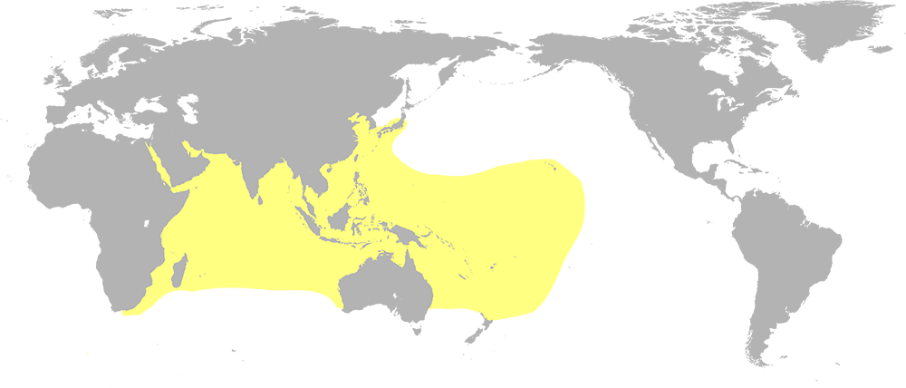 A world map highlighting portions of the pacific and Indian oceans