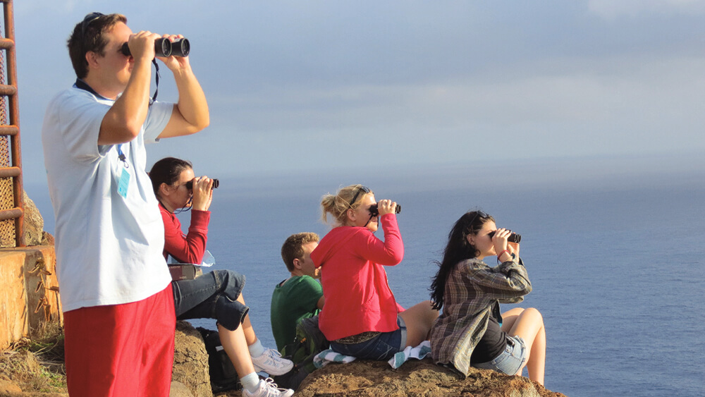 volunteers watching for humpback whales