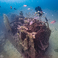 Diver near the tarpon  shipwreck