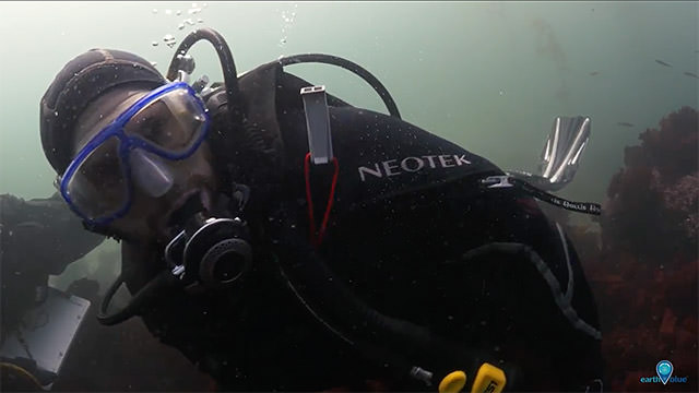john armor diving in monterey bay national marine sanctuary