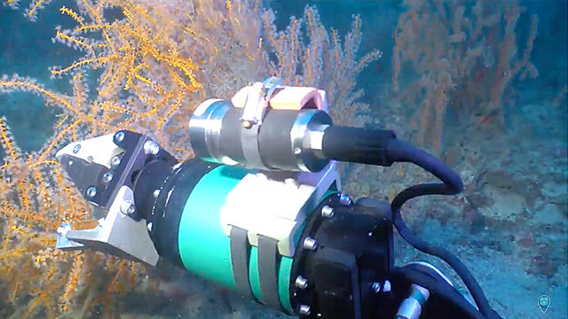 rov arm collecting samples