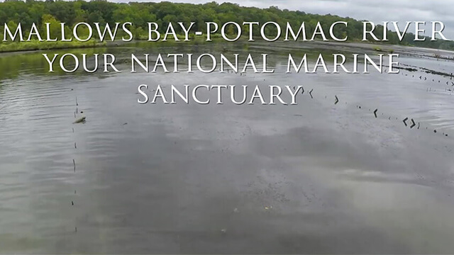 Mallows Bay-Potomac River Your National Marine Sanctuary