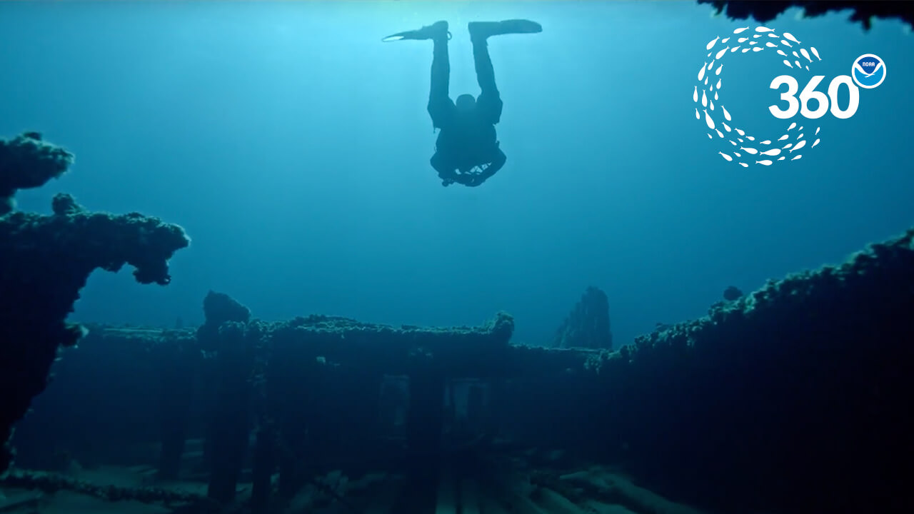 diver swims above the deck of a shipwreck